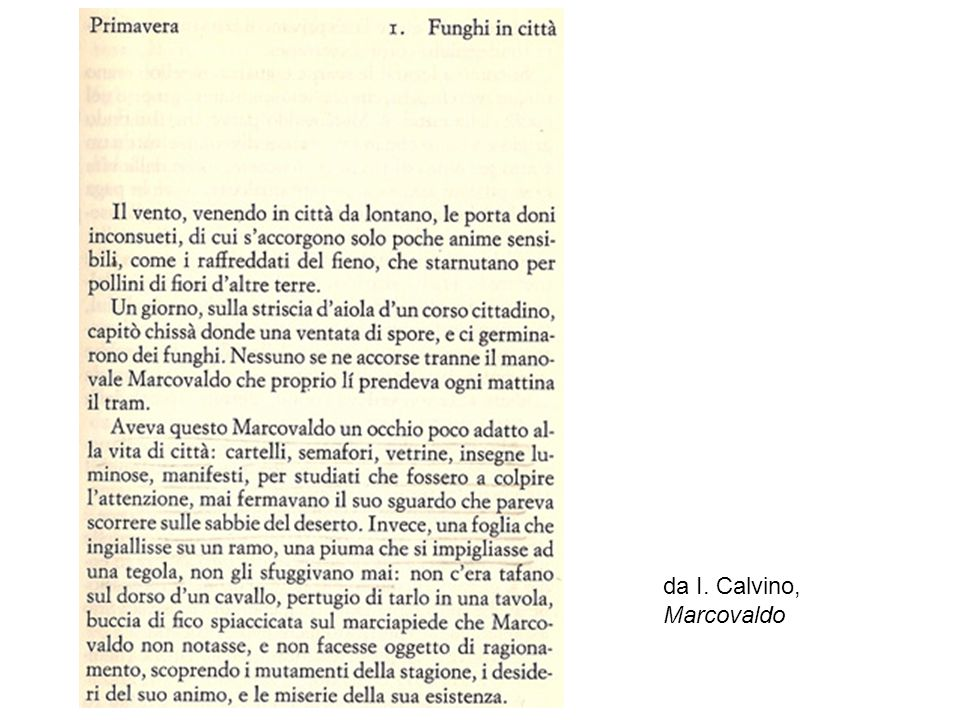 da I. Calvino, Marcovaldo […]